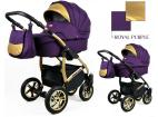 Rafpol Gold Lux 2020 Purple